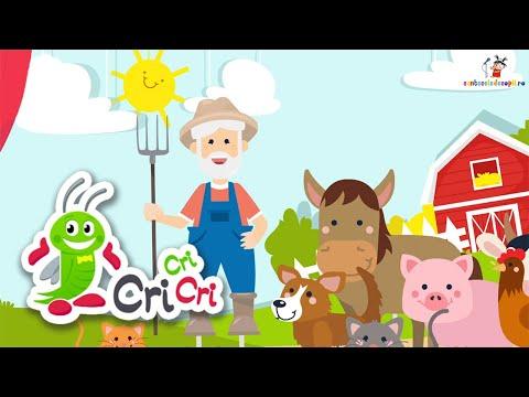 Un batranel o ferm-avea (Old MacDonald Had a Farm) | CriCriCri #cantecepentrucopii – Cantece pentru copii in limba romana