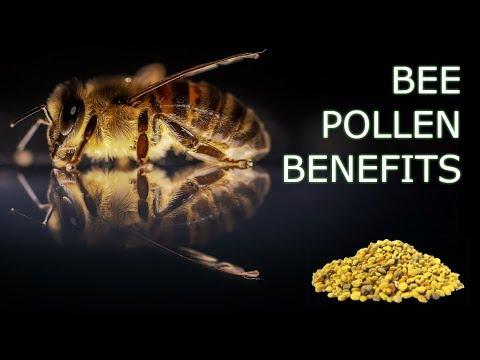 bee-pollen-health-benefits---is-bee-pollen-the-next-big-superfood?