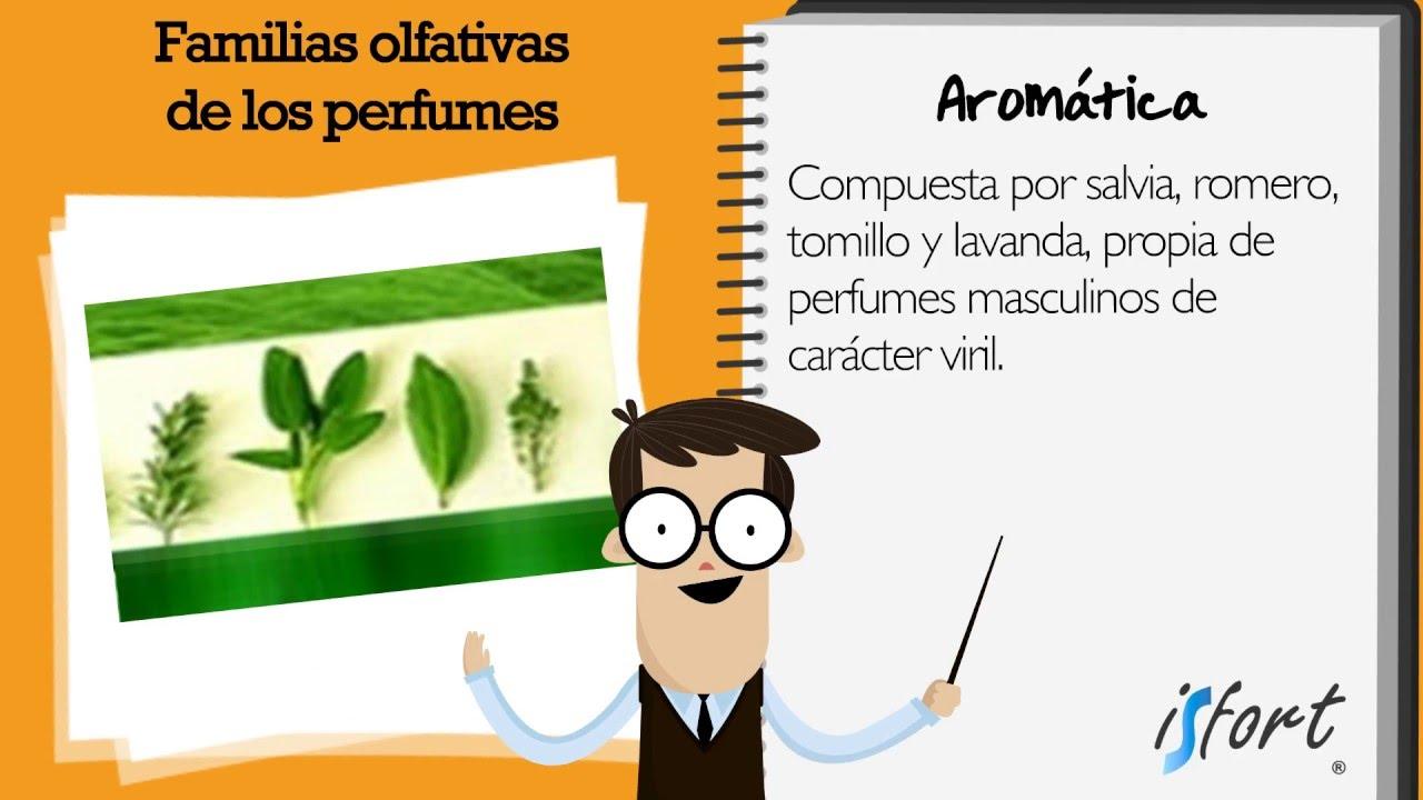 familias olfativas perfumes