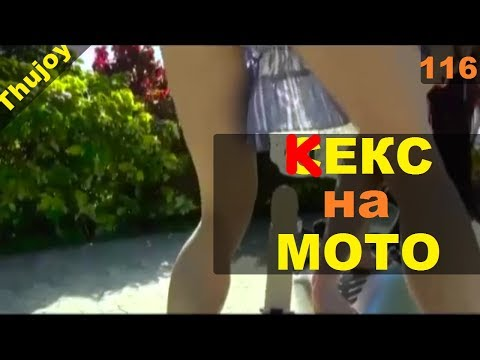 Кекс на мотоцикле Moto Ninja