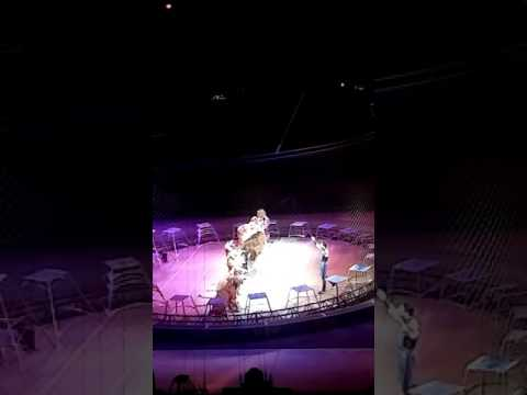 Ringling Bros.and Barnum & Bailey Circus 2016 Cleveland OH