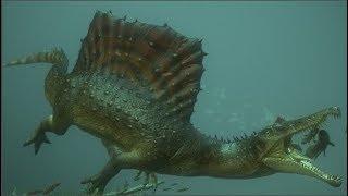 Spinosaurus - loài khủng long kỳ cục nhất thời cổ đại: săn cá như thần mà không thể bơi lội