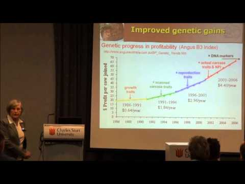 Video 1: Impact of Beef CRC technologies on the efficiency of beef production