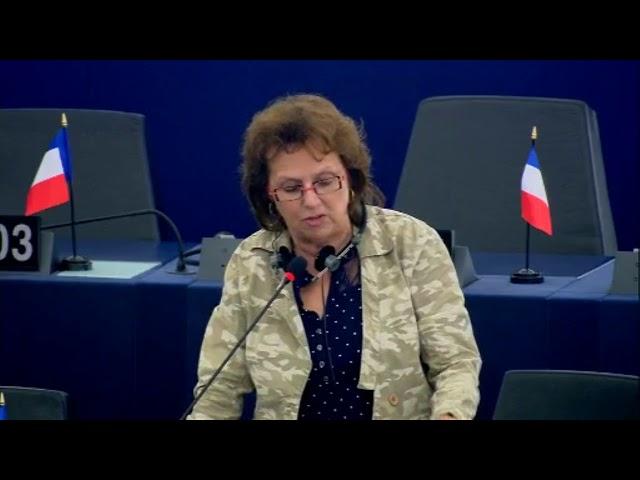 Dominique Bilde sur la modernisation de l'éducation dans l'Union européenne