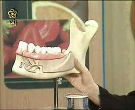 Dental care (Persian panel)
