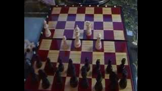 Как быстро научиться играть в шахматы:Урок 1 Основное