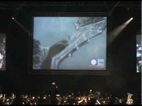 2009 VGL IN TAIWAN, SinJhuang. Shadow of the Colossus.