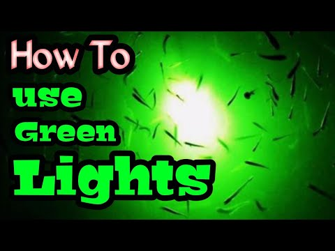 How To Use A LED Fishing Light