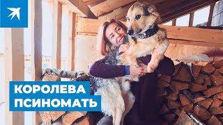 Успешный фотограф уехала из столицы, чтобы жить среди собак-инвалидов