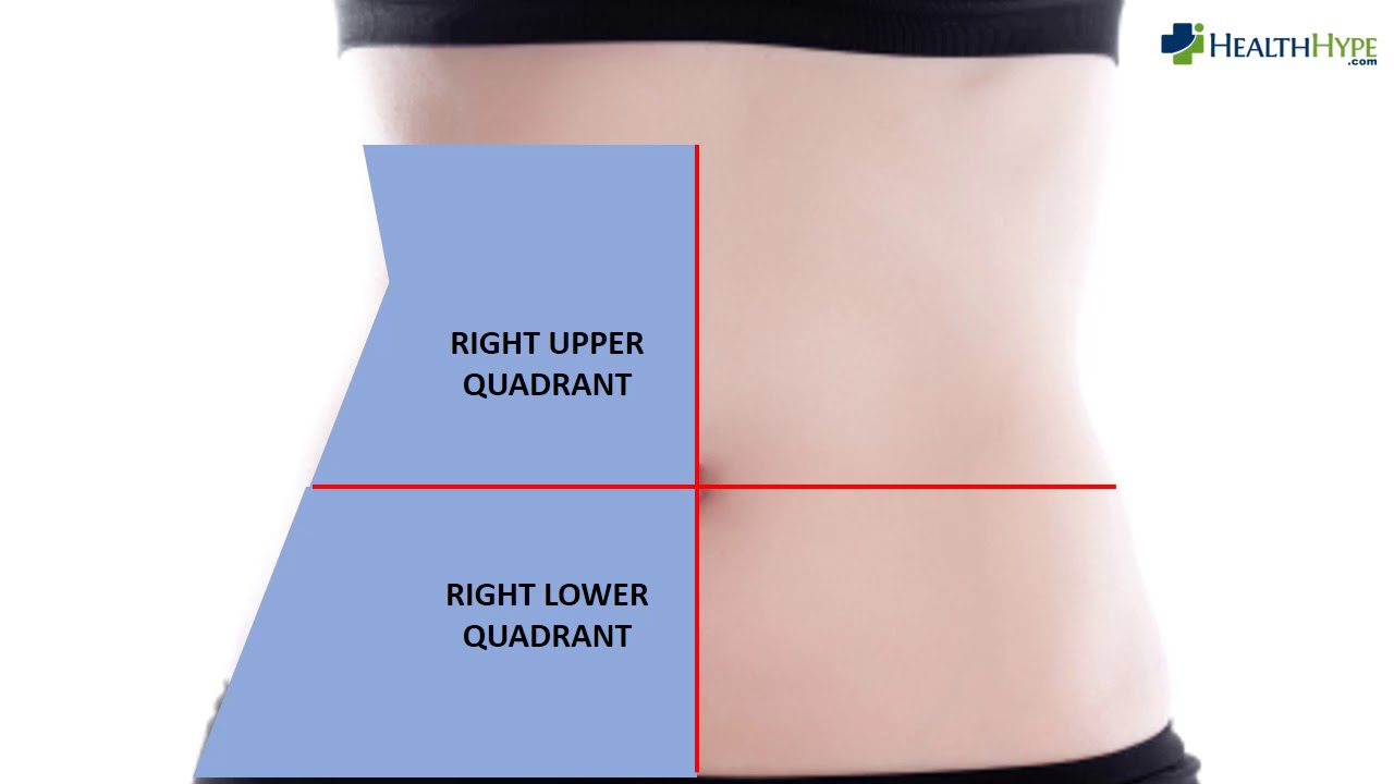 Left Side Upper Quadrant Left Side Lower And Upper Quadrant Back