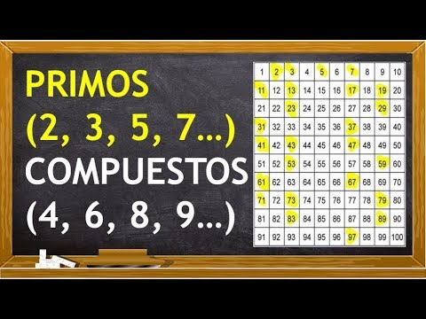 Números Primos Y Compuestos Youtube