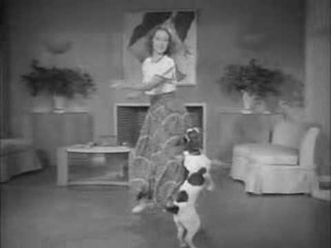 Amazing Tap Dance with trained dog