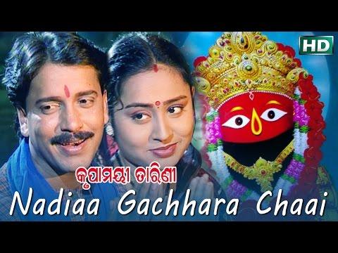 NADIAA GACHHARA CHAAI | Album-Krupamayee Tarini | Arabinda Muduli | Sarthak Music