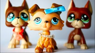 Lps (Series) : Hurts To Be Pretty Ep. 1