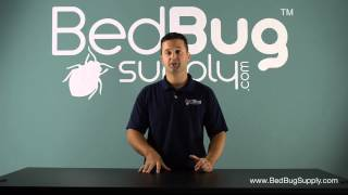 How to Move Without Bringing Bed Bugs With You