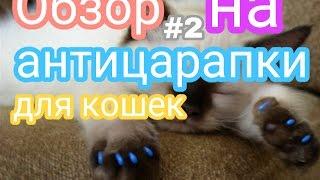 Обзор на антицарапки для котят,кошек и котов🐈🐱🐾