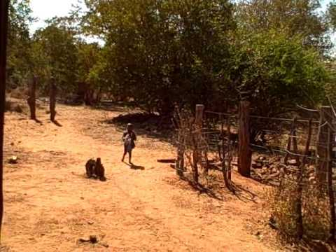 Zimbabwe-Victoria Falls_Mbisi Village54
