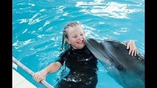 Шоу дельфинов - Дельфинарий видео - Плавание с дельфином