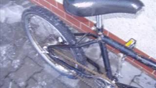 pytloviny na kolech