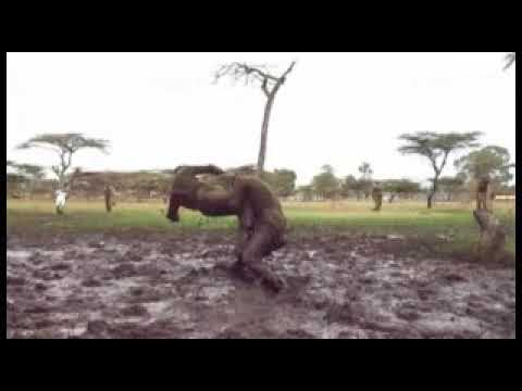 KENYA NYS Training