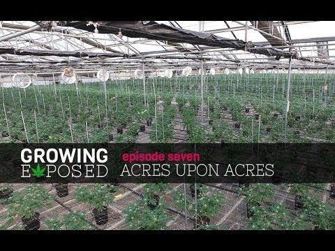 Growing Exposed Episode 7 Trailer - Acres Upon Acres