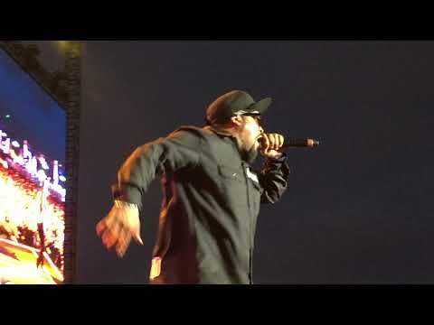 Ice Cube Check Yo Self Kaaboo 2017 Del Mar