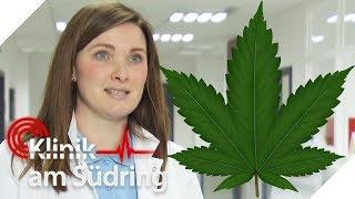 Cannabis-Kuchen gegessen: Patienten feiern fette Party in der Klinik! | Klinik am Südring | SAT.1