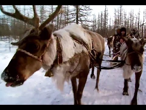 Республика Саха (Якутия) | Регионы | Телеканал «Страна»