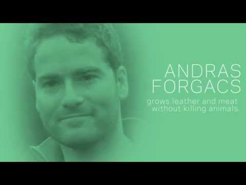 Andras Forgacs: Growing Meat and Leather Without Killing the Animal