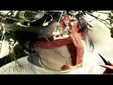 Music video VITER - Springtime