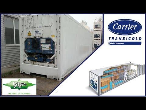видео: Рефконтейнер carrier transicold 69 nt40-511 micro link-2. Выбивает вводной автомат.