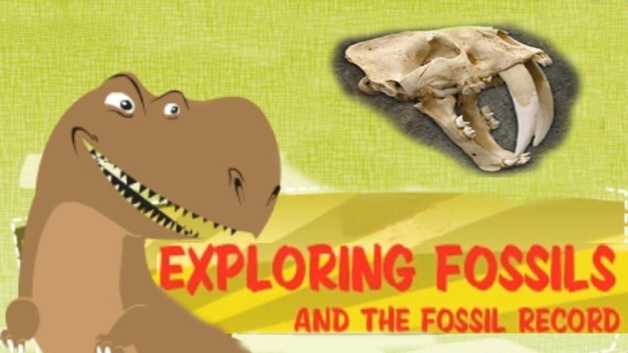 Fossils - Ms. Poston's 3rd Grade Class [ 720 x 1280 Pixel ]
