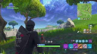 FORTNITE BATTLE ROYAL GETTING WINS ON solo