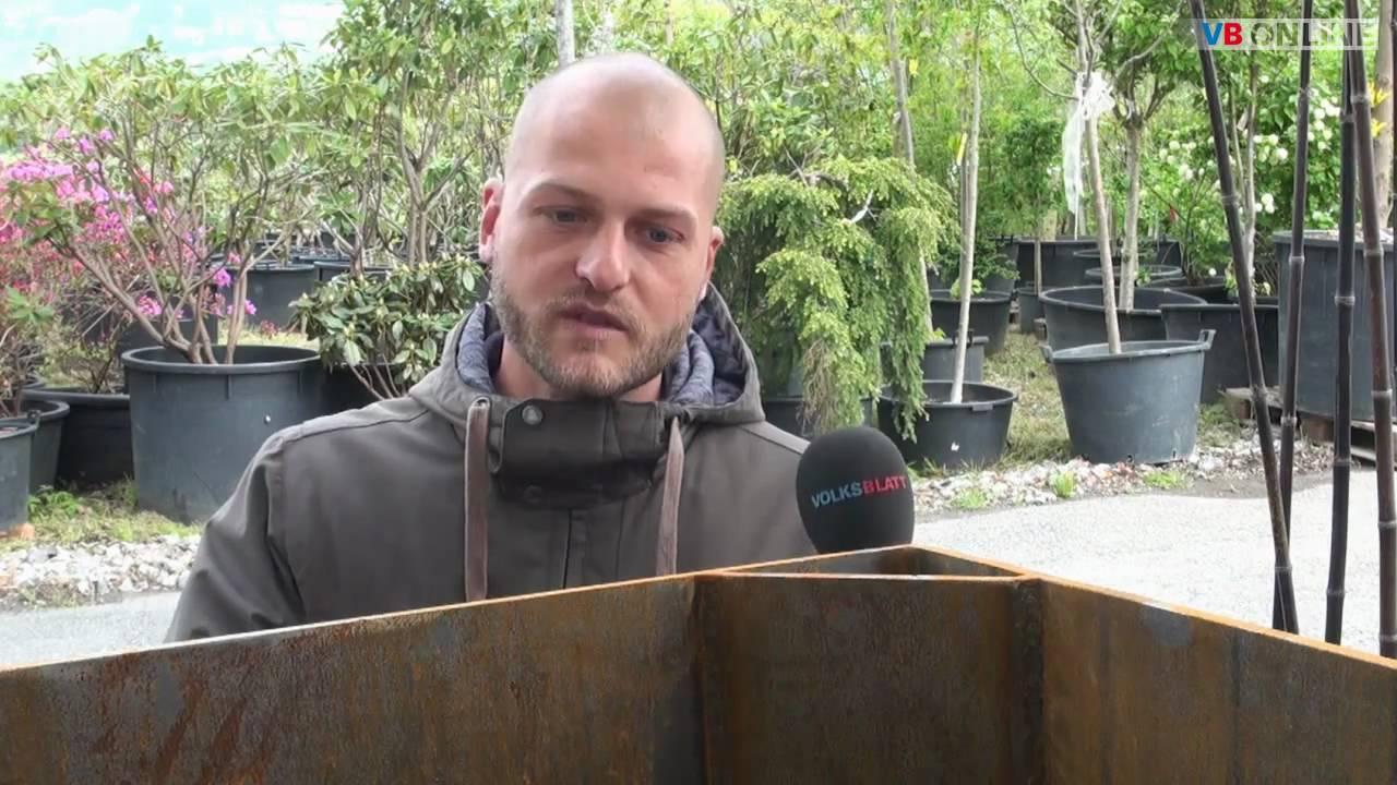 Bambus Im Garten Teil 1 Youtube