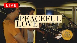 """Peaceful Love"" - Hot Damn Horns (live)"