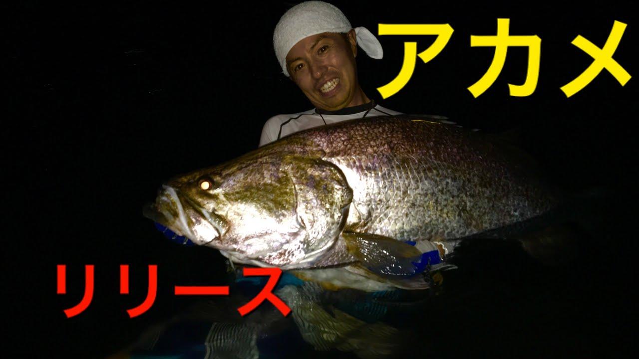三 大 怪 魚 日本