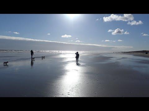Fraisthorpe To Bridlington Along The Beach With The Dogs