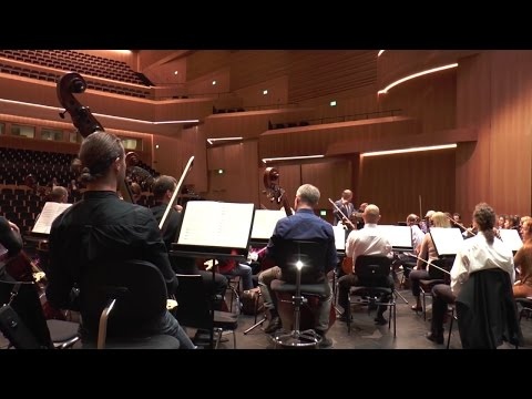 Valery Gergiev with the Mariinsky Theatre Orchestra - interview