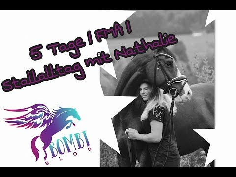 Stalltag - Nathalie und Caninjo | Intro | FMA VLOG | Teil 1 | BOMBI-BLOG |