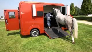 Présentation camion chevaux stx horses box par AllRoad Concept