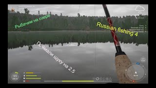 Russian Fishing 4 рыбалка на озере поймали щуку на 2 5 кг