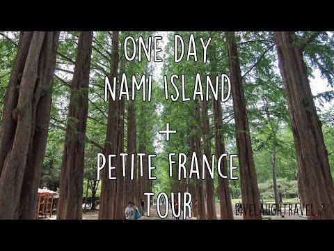 One Day Nami Island + Petite France tour (Korea)