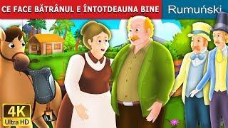 CE FACE BĂTRÂNUL E ÎNTOTDEAUNA BINE | Povesti pentru copii | Romanian Fairy Tales