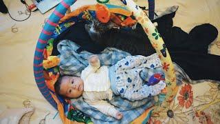 Бонус Раде 2 мес. Тролинг младенца, новые подарки и упражнения. Первые признаки Гениальности ребенка