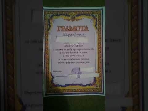 За отличную учёбу: в Приморье ученику дали грамоту с украинской символикой