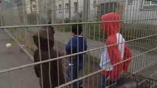 Политические беженцы в Германии