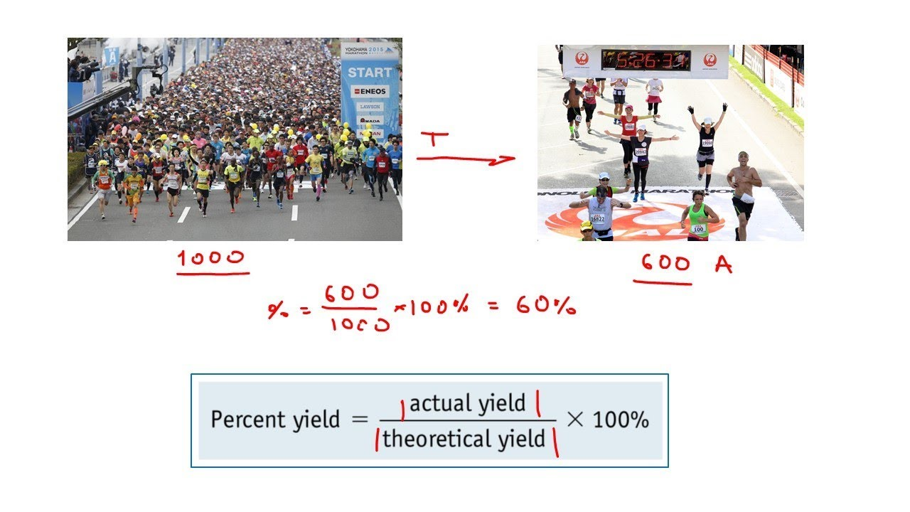 Reaction Percent Yield: Introduction and Practice Exercises