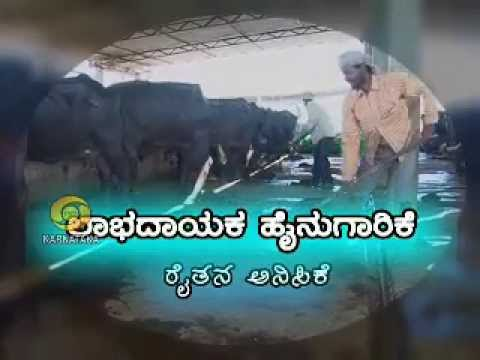 1.Large Scale Dairy farming  2.Horticulture