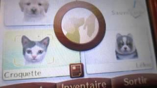 Gagner des points propriétaire Nintendogs + cats