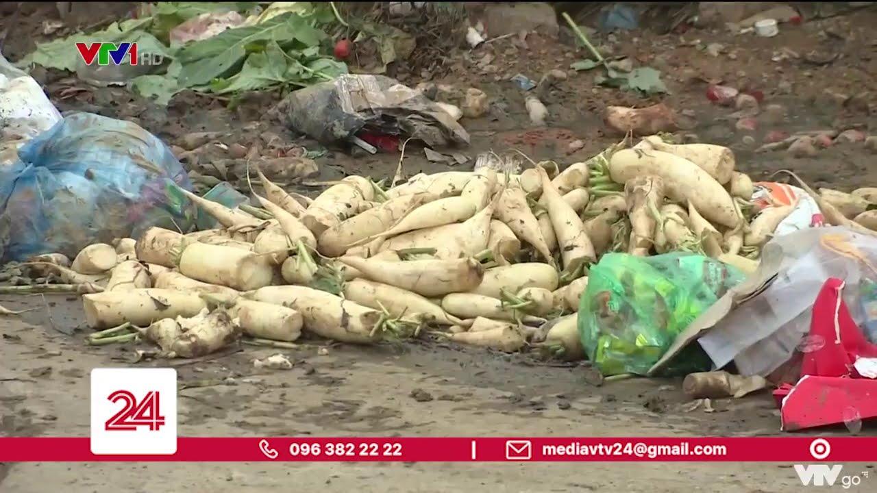 Kết nối tiêu thụ nông sản cho người dân Mê Linh | VTV24